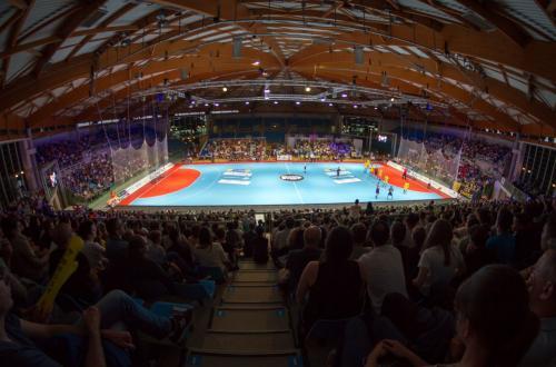 Match de handball MEHB/PSG (LIDL STARLIGUE) – surface de jeu